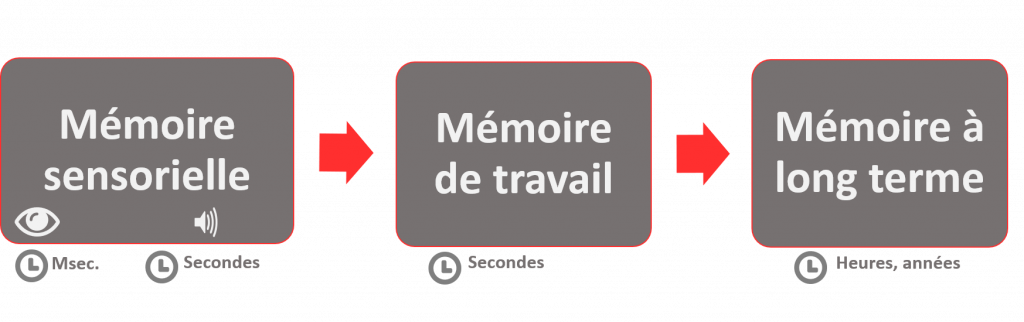 Composantes de la mémoire